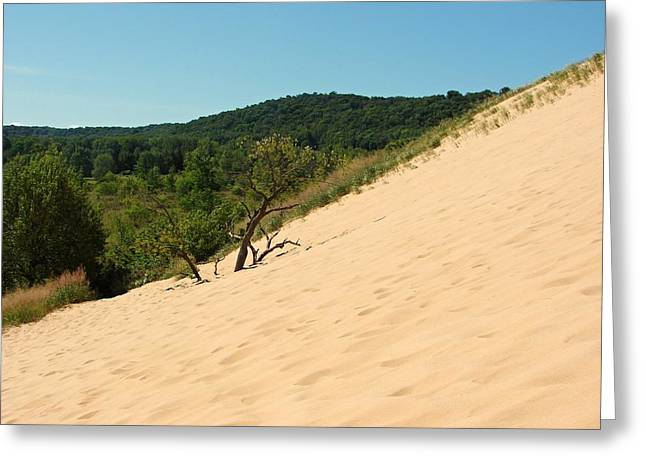 Sand Dunes Digital Greeting Cards - Dune Climb at Sleeping Bear Greeting Card by Michelle Calkins