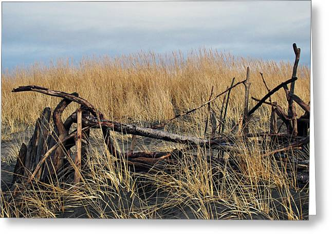 Drifter Photographs Greeting Cards - Dune Drifters  Greeting Card by Pamela Patch