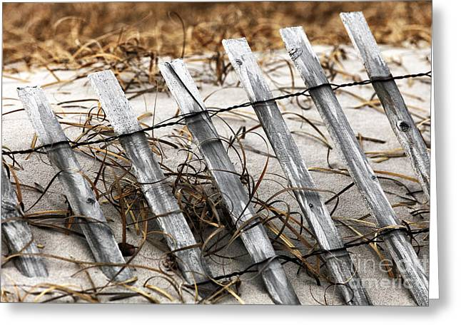 Down The Shore Greeting Cards - Dune Fence I Greeting Card by John Rizzuto