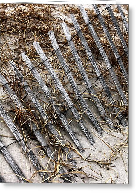 Photo Art Gallery Greeting Cards - Dune Fence VIII Greeting Card by John Rizzuto
