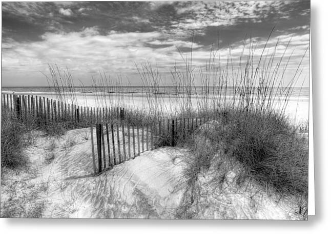 Blue Sky And Sand Greeting Cards - Dune Fences Greeting Card by Debra and Dave Vanderlaan