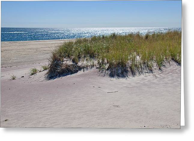 Boating Greeting Cards - Dune Grass Greeting Card by Alida Thorpe