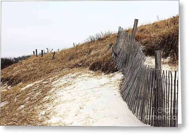 Sand Fences Greeting Cards - Dune Path Greeting Card by John Rizzuto