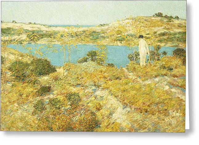 Short Brush Strokes Greeting Cards - Dune Pool Greeting Card by Childe Hassam
