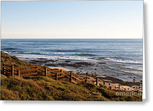 Wooden Stairs Greeting Cards - Dune Steps 01 Greeting Card by Rick Piper Photography