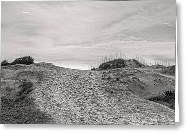 Coastal Dunes Greeting Cards - Dune Trail Greeting Card by Debra and Dave Vanderlaan