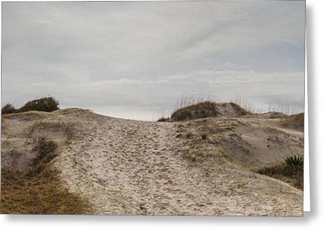 Coastal Dunes Greeting Cards - Dune Trail in Color Greeting Card by Debra and Dave Vanderlaan