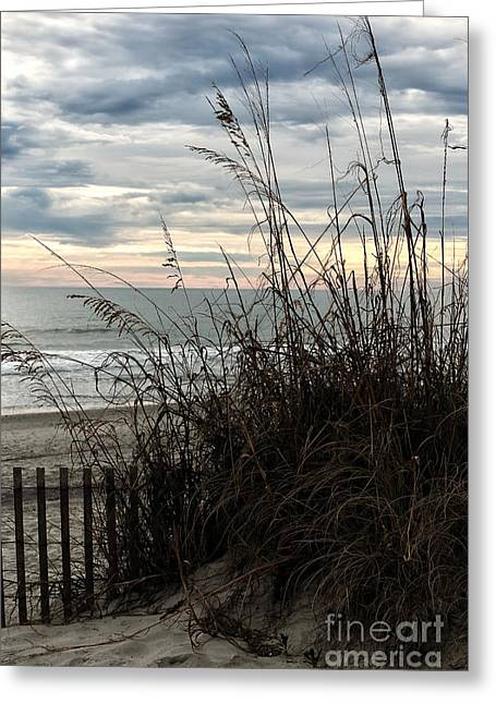 Sand Fences Greeting Cards - Dune View Greeting Card by John Rizzuto