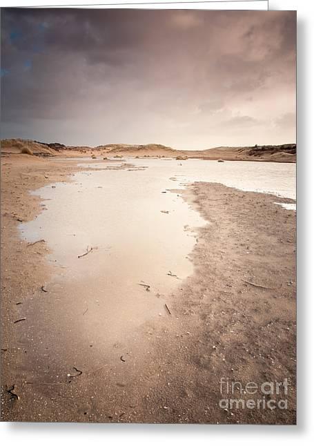 Limburg Greeting Cards - Dune Wetlands In Winter Greeting Card by David Hanlon