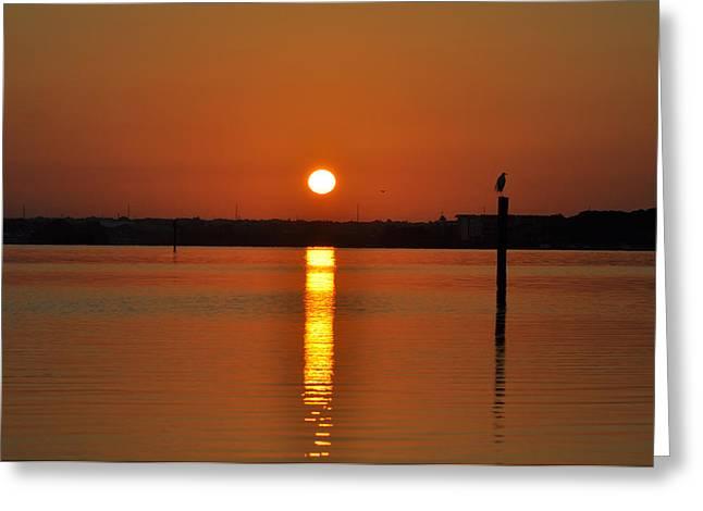 Dunedin Greeting Cards - Dunedin Florida Sunrise Greeting Card by Bill Cannon