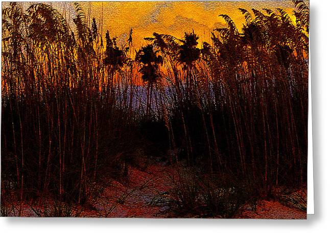Oats Digital Greeting Cards - Dunes at Dusk antique style A Greeting Card by David Lee Thompson