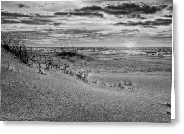 Santa Rosa Beach Greeting Cards - Dunes of Gulf Islands National Seashore BW Greeting Card by JC Findley
