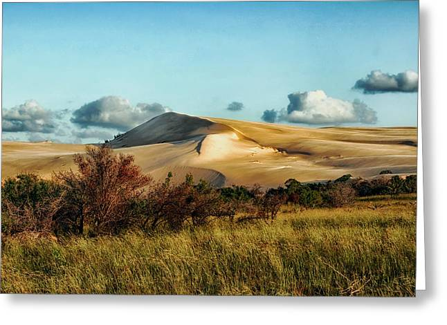 Large Sand Dunes Greeting Cards - Dunes of Mozambique Greeting Card by Mountain Dreams