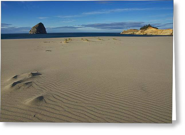 Ocean Art. Beach Decor Greeting Cards - Dunes of Time Greeting Card by Steve Luther