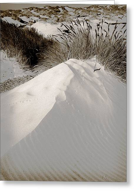 Sand Pattern Greeting Cards - Duotone Dune Greeting Card by Bonnie Bruno