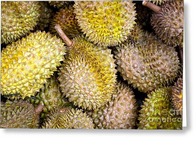 Jackfruit Greeting Cards - Durian Fruit Greeting Card by Tim Hester