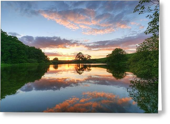 Natural Realm Greeting Cards - Dusk at Lake Greeting Card by Svetlana Sewell