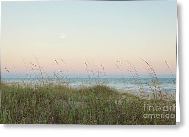 Sea Oats Greeting Cards - Dusk at the Beach Greeting Card by Kay Pickens