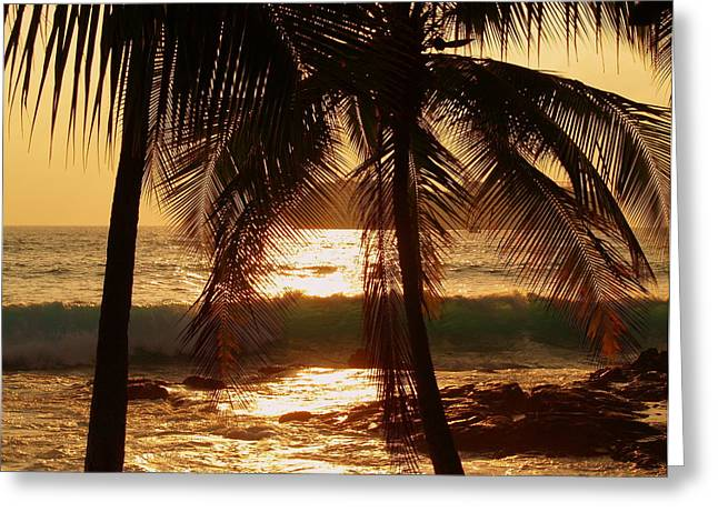 Ocean Art. Beach Decor Greeting Cards - Dusk Greeting Card by Athala Carole Bruckner