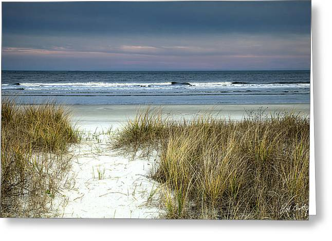 Sea Oats Greeting Cards - Dusk in the Dunes Greeting Card by Phill  Doherty