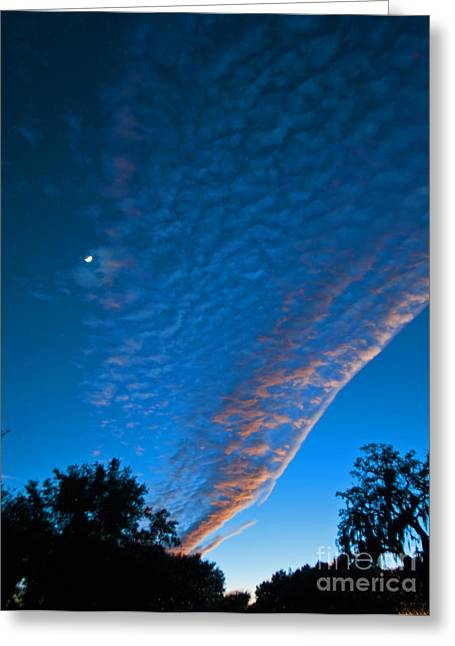 Consumerproduct Greeting Cards - Bright Blue Dusk Greeting Card by George D Gordon III