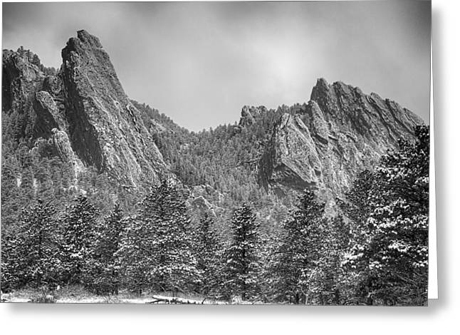 Winter Photos Greeting Cards - Dusted Flatiron in Black and White  Greeting Card by James BO  Insogna