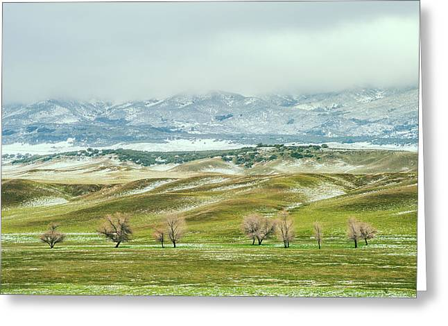Back Country Greeting Cards - Dusted Pasture Greeting Card by Alexander Kunz