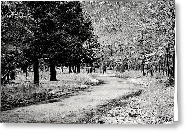 Book Cover Art Greeting Cards - Dusted Path - Black and White Greeting Card by Terry DeLuco