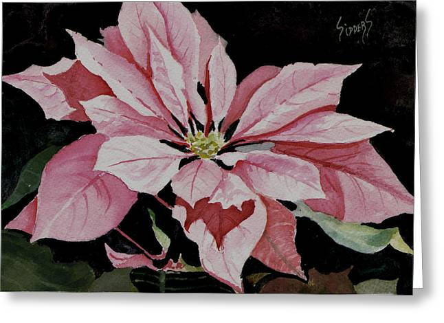 Poinsettias Greeting Cards - Dusties Poinsettia Greeting Card by Sam Sidders