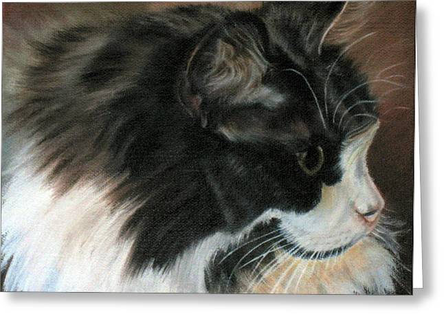 Lavonne Hand Greeting Cards - Dusty Our Handsome Norwegian Forest Kitty Greeting Card by LaVonne Hand