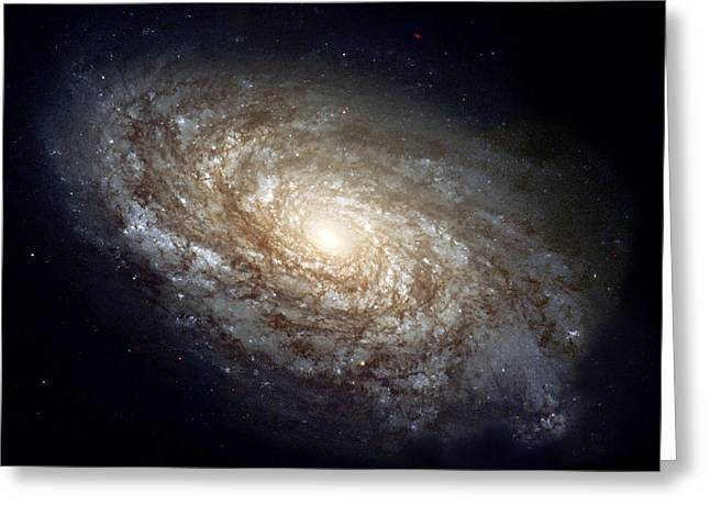 Glister Greeting Cards - Dusty Spiral Galaxy Greeting Card by Celestial Images