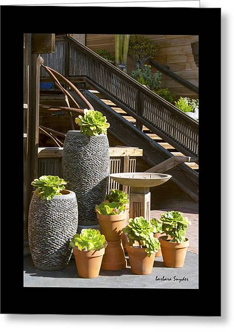 Stone Planter Greeting Cards - Duvet The Garden Gallery Morro Bay California  Greeting Card by Barbara Snyder