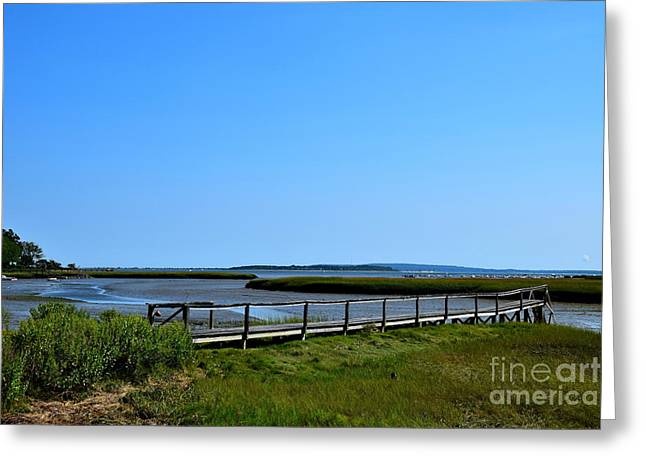 Duxbury Greeting Cards - Duxbury Greeting Card by Brian Mooney