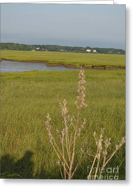 Duxbury Greeting Cards - Duxbury Mass Greeting Card by DejaVu Designs
