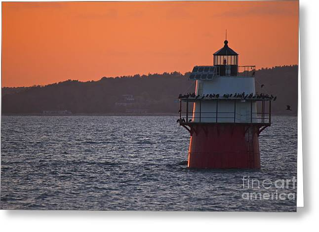 Duxbury Greeting Cards - Duxbury Pier Lighthouse Greeting Card by Amazing Jules