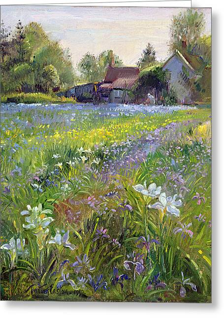 Dwarf Irises And Cottage Greeting Card by Timothy Easton