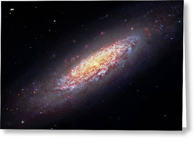 Dwarf Spiral Galaxy Ngc 6503 Greeting Card by Robert Gendler