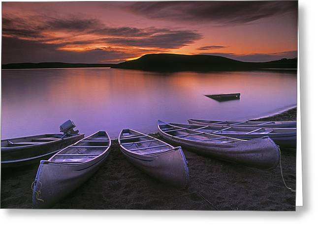 Peaceful Scenery Greeting Cards - D.wiggett Canoes On Shore, Pink And Greeting Card by First Light
