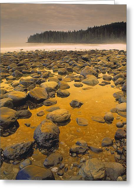 China Beach Greeting Cards - D.wiggett Rocks On Beach, China Beach Greeting Card by First Light