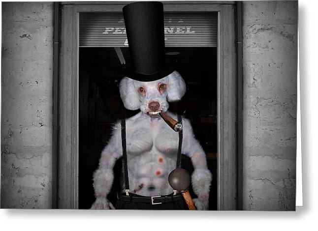 Suspenders Mixed Media Greeting Cards - Dwight The Canine Gentleman Greeting Card by Robert Sanders