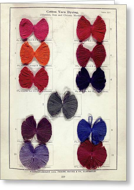 Dyed Cotton Yarn Samples Greeting Card by Science, Industry And Business Library: General Collection/new York Public Library