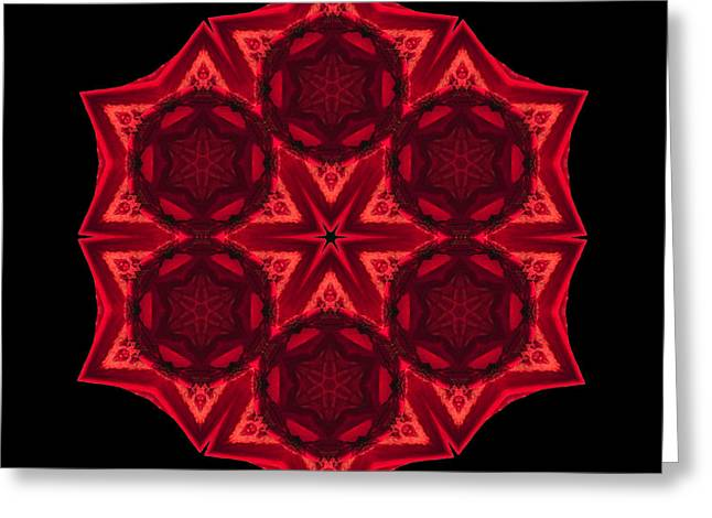 Dying Amaryllis III Flower Mandala Greeting Card by David J Bookbinder