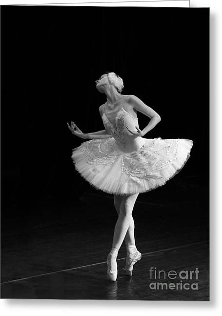 Young St. Clare Greeting Cards - Dying Swan 3. Greeting Card by Clare Bambers