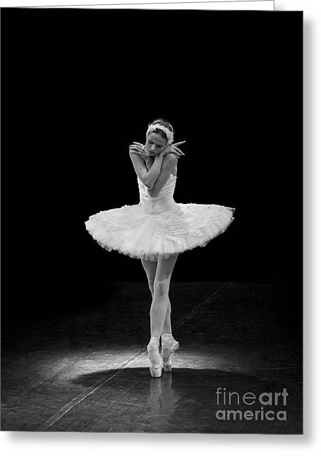 Young St. Clare Greeting Cards - Dying Swan 5. Greeting Card by Clare Bambers
