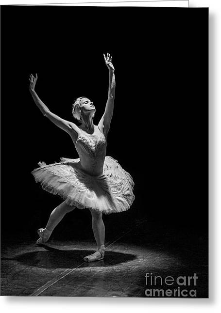 Young St. Clare Greeting Cards - Dying Swan 6. Greeting Card by Clare Bambers
