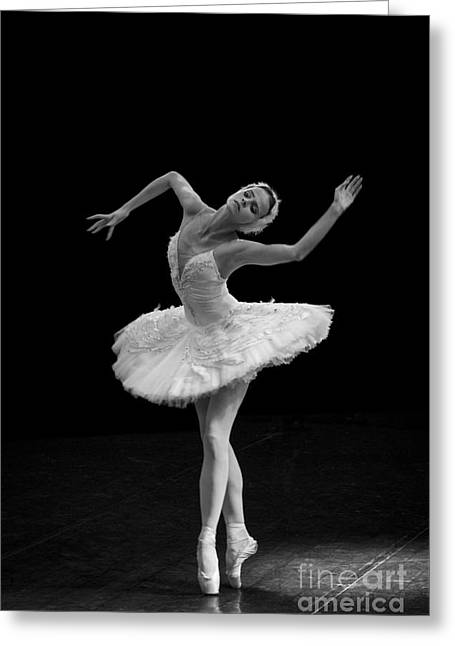 Young St. Clare Greeting Cards - Dying Swan 7. Greeting Card by Clare Bambers