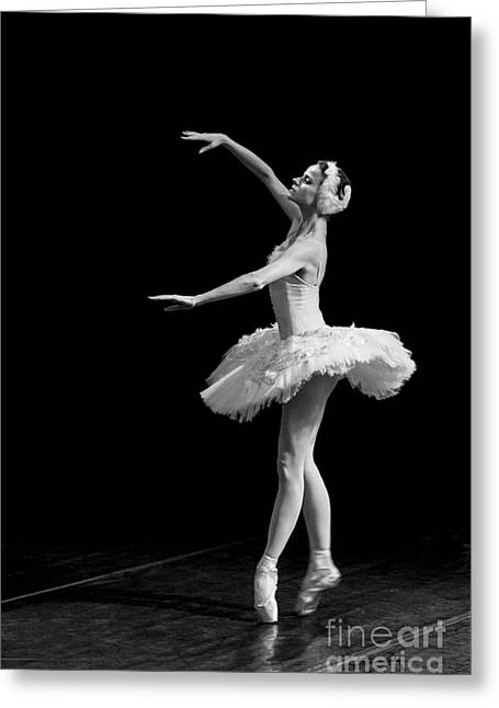 Young St. Clare Greeting Cards - Dying Swan 8. Greeting Card by Clare Bambers