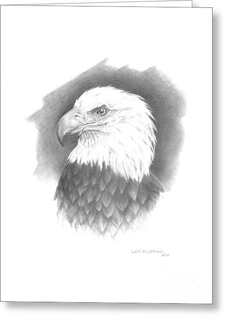 Eagle Drawing Greeting Cards - Eagle-1 Greeting Card by Lee Updike