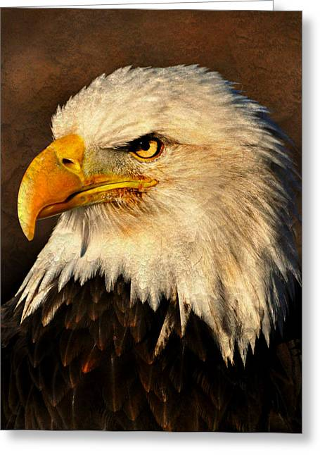 Marty Koch Greeting Cards - Eagle 51 Greeting Card by Marty Koch