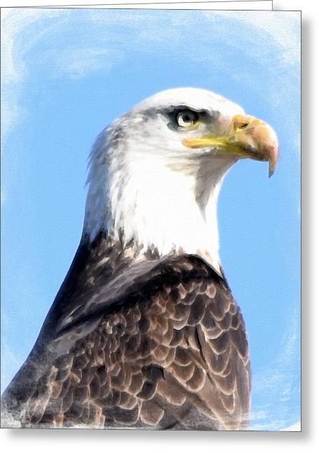 Eagle  Greeting Card by Bonnie Bruno